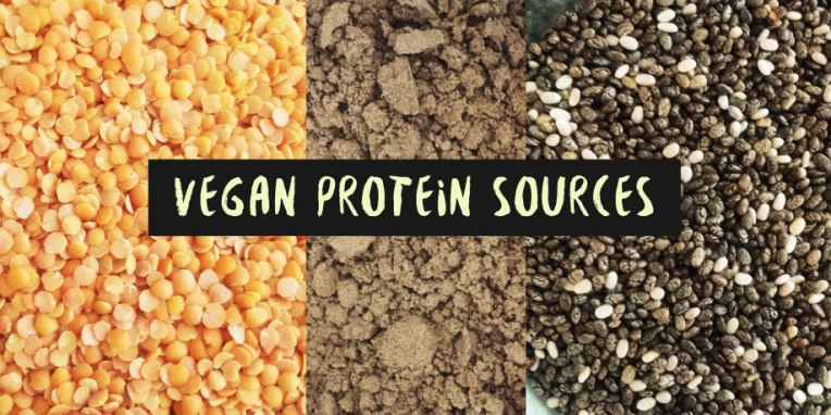 vegan-protein-graphic