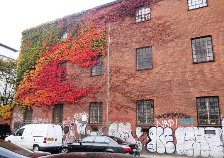 leaf-grafiti