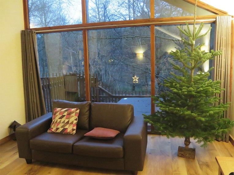 cabin-lounge